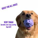 Wuff Ball | Purple - Very Tough Dog Ball